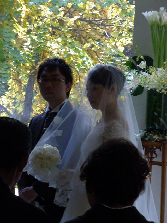 【今日の一枚】CoSTEPperの結婚式_c0025115_22293072.jpg