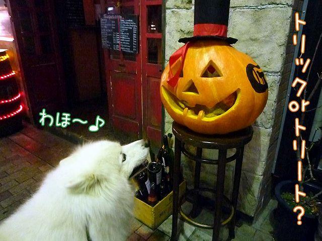 Happy Halloween_c0062832_17344690.jpg