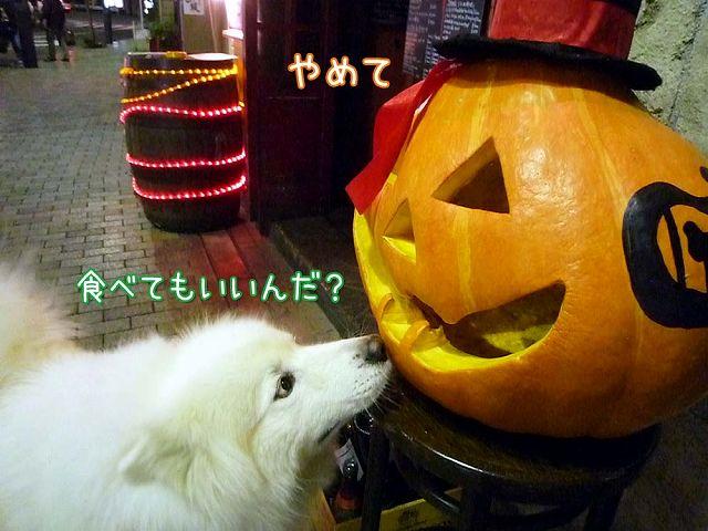 Happy Halloween_c0062832_17345312.jpg