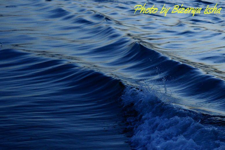 『Blue』_d0086248_6353838.jpg