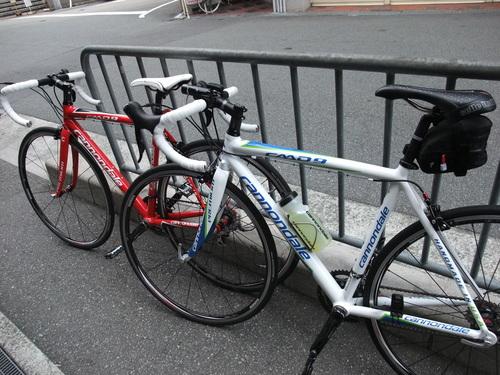 秋の武庫川サイクリング コスモスロード・ラン_d0174462_23342370.jpg