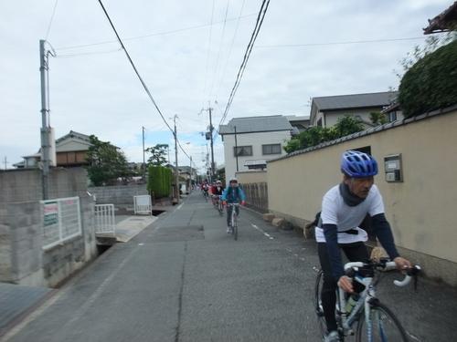 秋の武庫川サイクリング コスモスロード・ラン_d0174462_23383192.jpg
