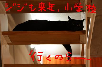 d0009175_20124926.jpg