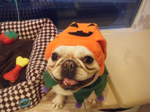 ★Happy Halloween★ 3_b0186183_1716574.jpg