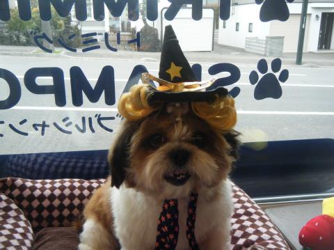 ★Happy Halloween★ 3_b0186183_17184191.jpg