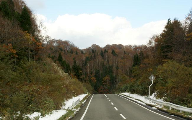 樹海ライン~十和田湖2 二ヶ所の展望台とツグミなど^^_a0136293_17101652.jpg