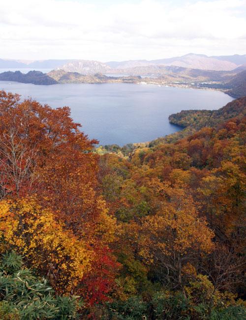 樹海ライン~十和田湖2 二ヶ所の展望台とツグミなど^^_a0136293_17104935.jpg
