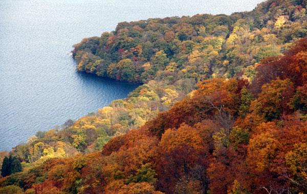 樹海ライン~十和田湖2 二ヶ所の展望台とツグミなど^^_a0136293_1711174.jpg