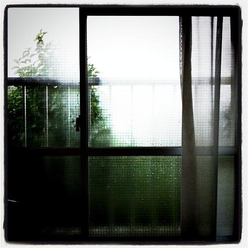 ある雨の日 azurite_f0215496_1232465.jpg