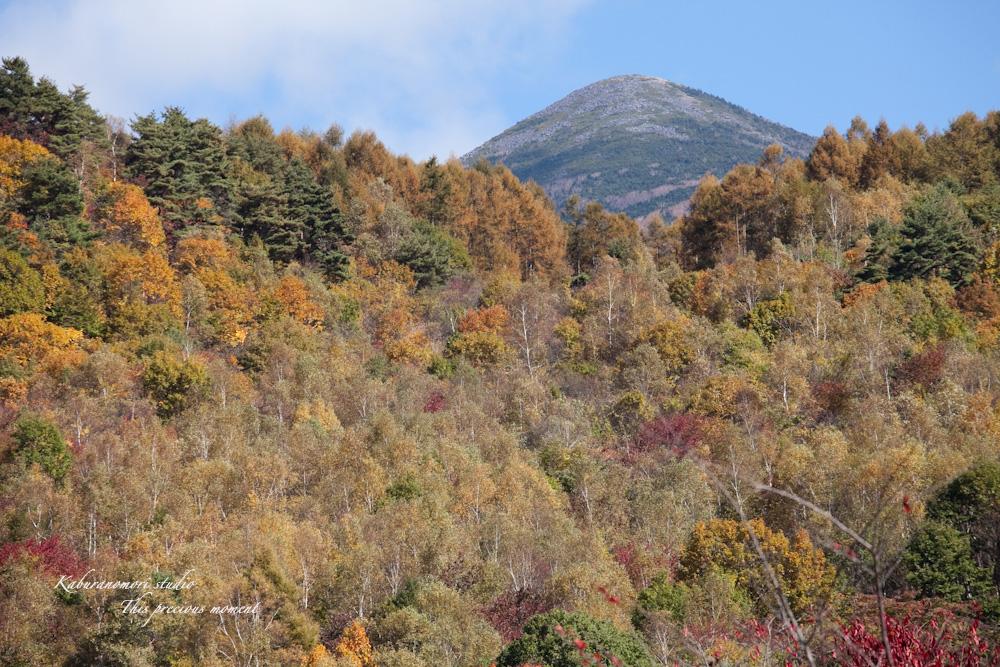 富士見高原から蓼科へ_c0137403_17542995.jpg