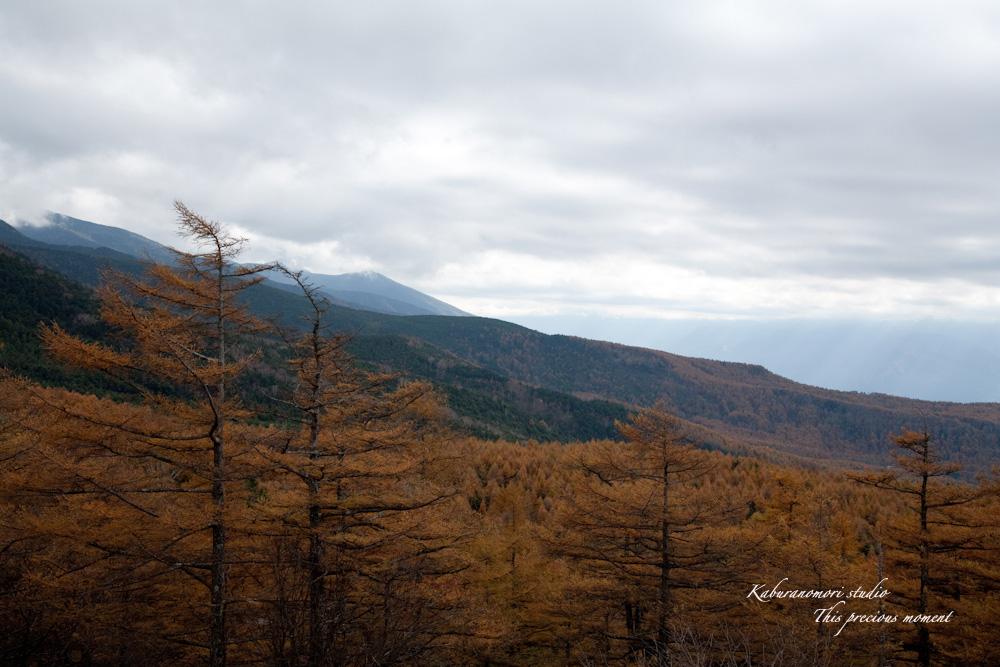 富士見高原から蓼科へ_c0137403_18105021.jpg