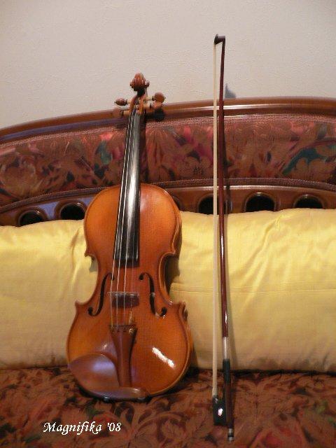 ヴァイオリン Violin_e0140365_233616.jpg