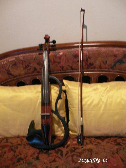 ヴァイオリン Violin_e0140365_23361932.jpg