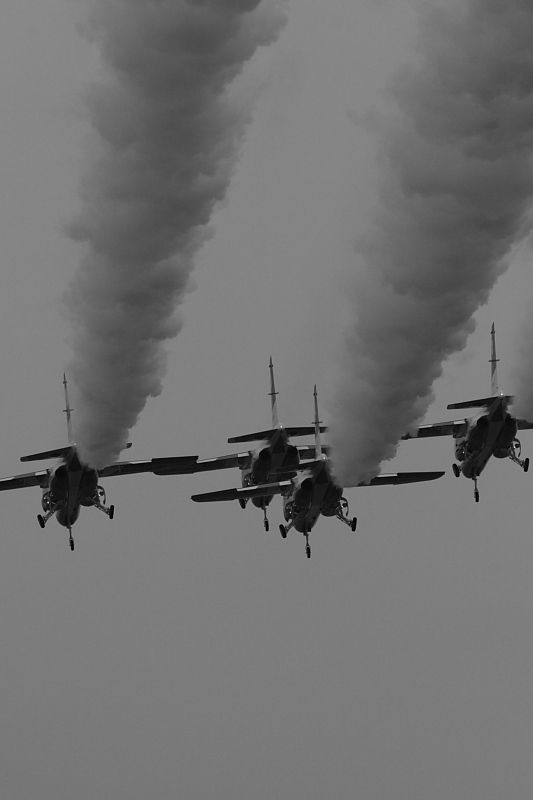 岐阜基地航空祭<最終回>_c0134879_20362022.jpg