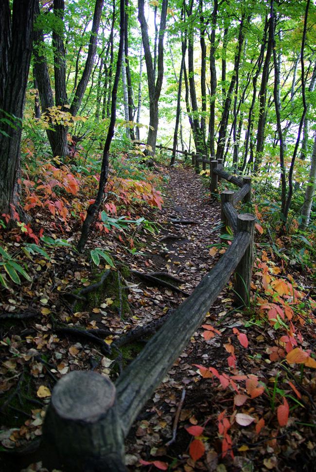 秋の西岡公園③~静かな夕景~(札幌市豊平区)_c0223825_0473252.jpg