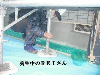 塗装工事3日目_f0031037_2282731.jpg