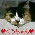 b0181740_15143341.jpg