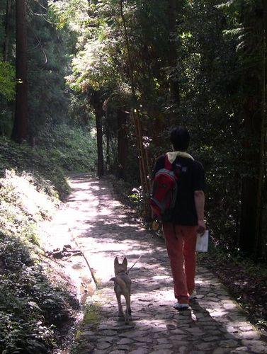 奈良室生~山辺の道_b0025947_1110331.jpg
