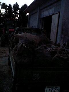 牛肉とシャケ_e0131462_19104784.jpg