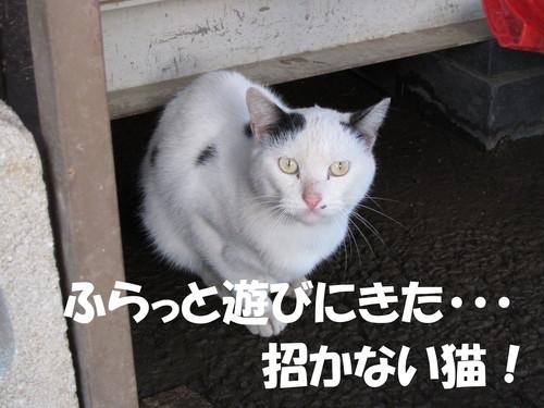 b0200291_17142935.jpg