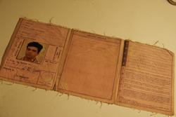 イタリアの運転免許証~日本とイタリアのタイムラグ_f0106597_2364794.jpg