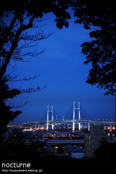 夜想曲_f0100215_1513041.jpg