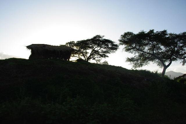 エチオピア(22) エチオピア料理の夕食_c0011649_09842.jpg
