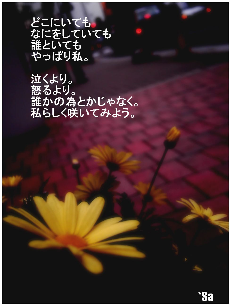 c0220249_2102997.jpg