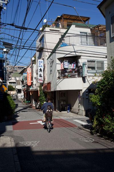 2010/11/03 文京区_b0171364_19304640.jpg