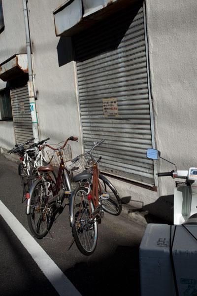 2010/11/03 文京区_b0171364_19323852.jpg