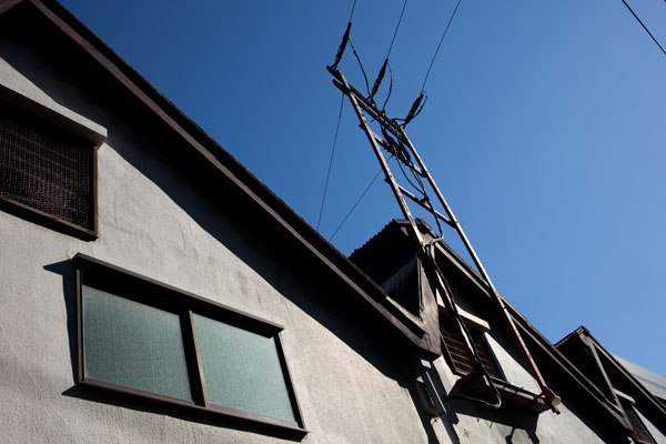 2010/11/03 文京区_b0171364_19325898.jpg