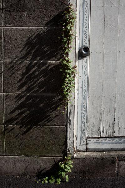 2010/11/03 文京区_b0171364_1932823.jpg