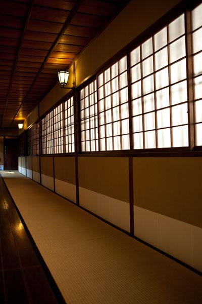2010/11/03 文京区_b0171364_19332241.jpg