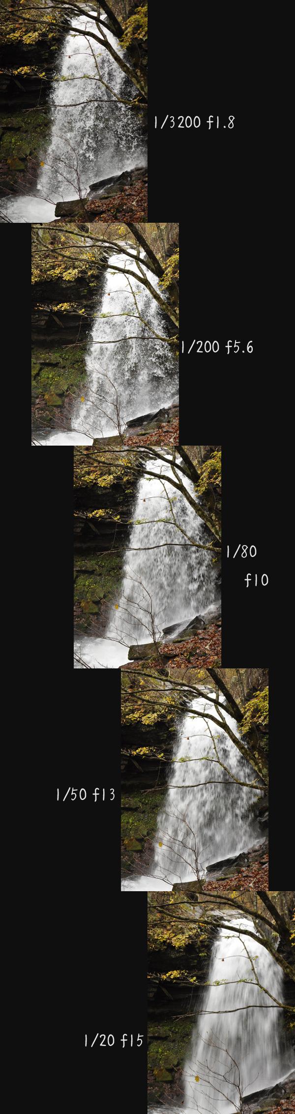 d0126366_1957432.jpg