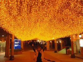 熊本旅行☆_e0176128_18565715.jpg
