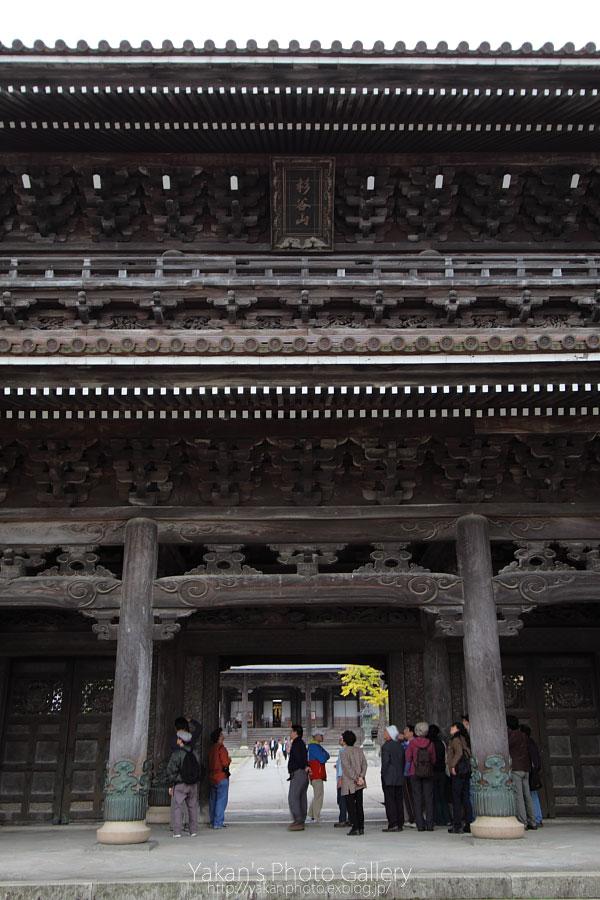 toyama photo life 写真撮影会 井波-瑞泉寺→城端-善徳寺03 瑞泉寺山門編_b0157849_13554973.jpg