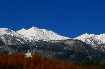 白峰とカラマツの黄葉_f0182173_131372.jpg