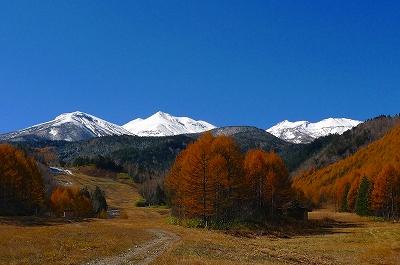 白峰とカラマツの黄葉_f0182173_1315788.jpg