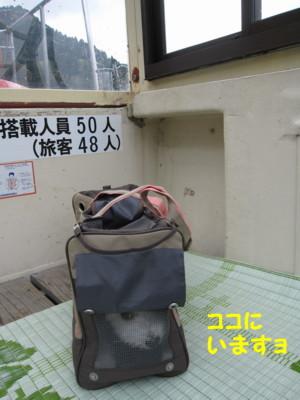 b0193480_208185.jpg