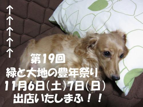 b0200291_16423824.jpg