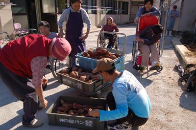 ☆サツマイモ大収穫祭☆_a0154110_14344384.jpg