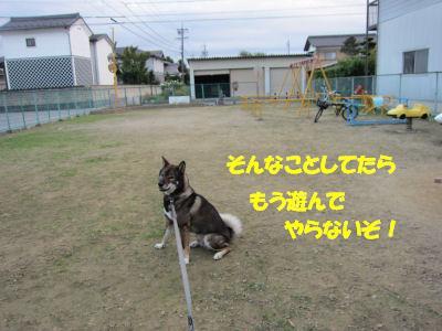 f0143123_20105550.jpg