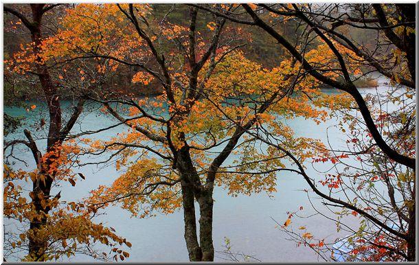 2010年10月 東北の紅葉Ⅲ_d0123528_13163491.jpg