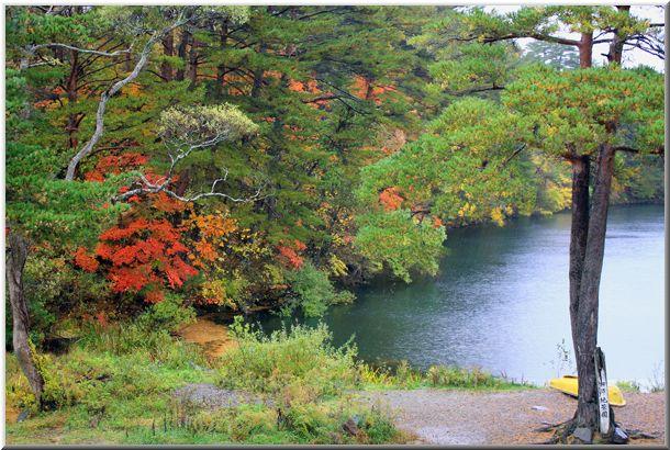 2010年10月 東北の紅葉Ⅲ_d0123528_1320262.jpg