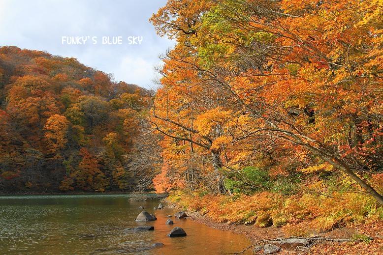 晩秋の山へ 【その2・冬は、もうすぐそこに・・】_c0145250_20452724.jpg