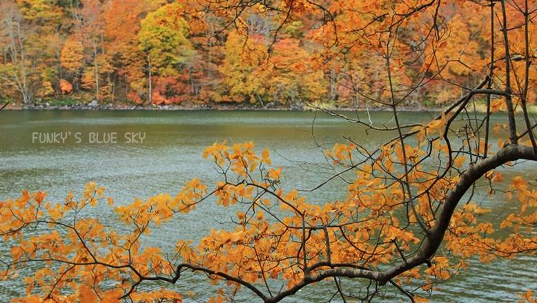 晩秋の山へ 【その2・冬は、もうすぐそこに・・】_c0145250_20514754.jpg