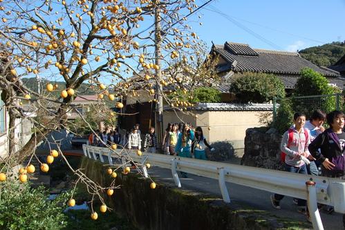 岬高校「MISAKIプロジェクト2010」;孝子の森植樹サポート_c0108460_1823743.jpg