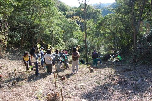 岬高校「MISAKIプロジェクト2010」;孝子の森植樹サポート_c0108460_18253999.jpg