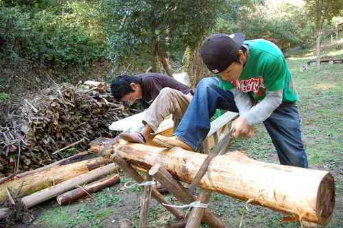 岬高校「MISAKIプロジェクト2010」;孝子の森植樹サポート_c0108460_18273655.jpg