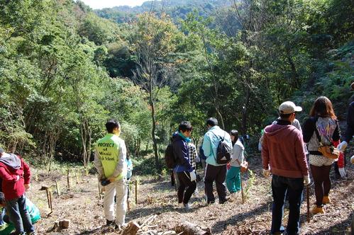 岬高校「MISAKIプロジェクト2010」;孝子の森植樹サポート_c0108460_20135945.jpg